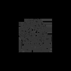 Matte Leao-1